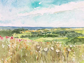 Northdowns from Ditchling