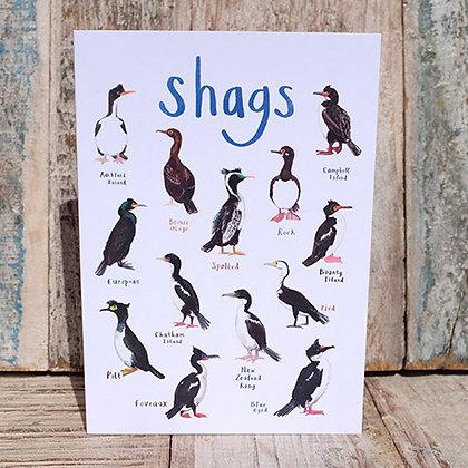Shags