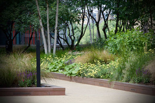 communal-garden-design-london