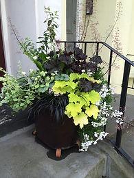 A prize-winning Kensington garden