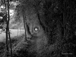 saulchoy tunnel