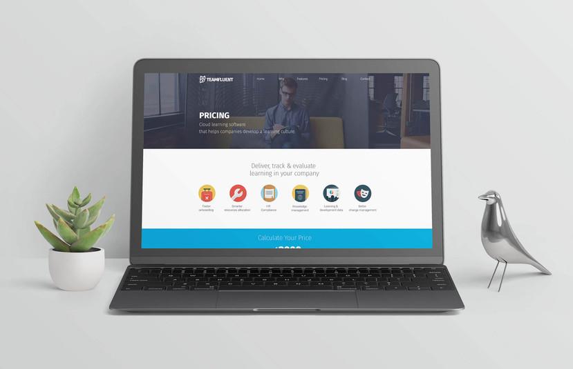 teamfluent-website-mockup