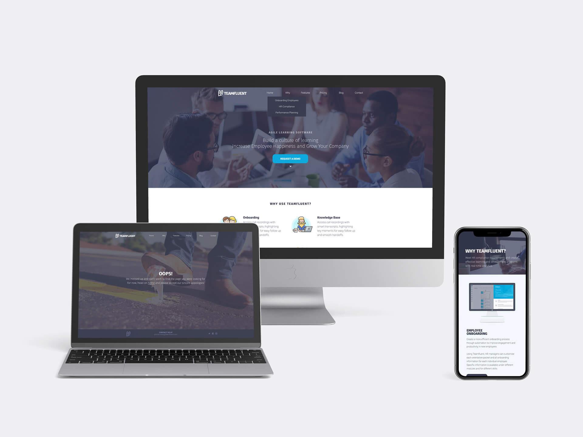 teamfluent-responsive-website