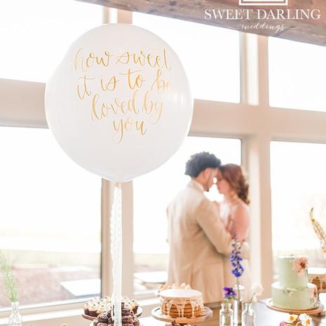 Central-Illinois-Wedding-Photographer-Pe