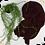 Thumbnail: Châle en jersey koweïtien - Wine