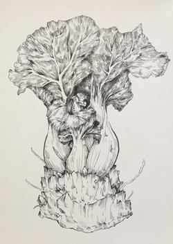 """""""I drew a bok choy that I'm propagating in water because I think it represents the healing and growth that can happen through all this, despite rocky starts and hard struggles""""  By Kimberly Au"""