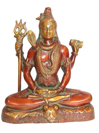 Brass Shiva Statue (20cm/2.4kg)