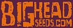bigheadseedslogo.png