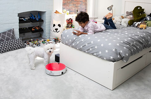 Little boy with dog controls bObi Pet using the remote control