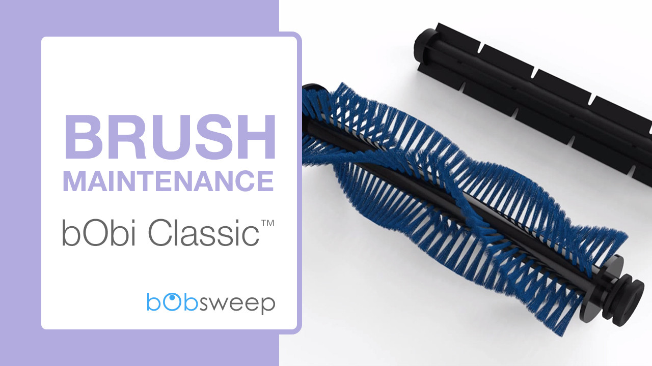 Brush Maintenance