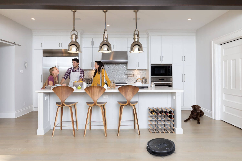 PetHair Vision in kitchen