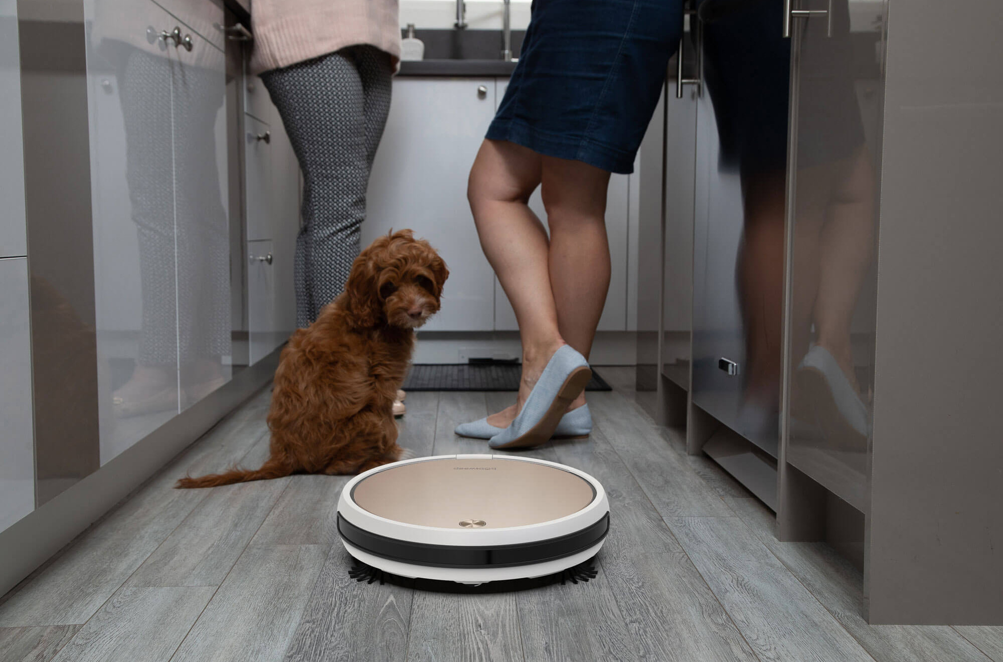 Bob Pro with dog in kitchen