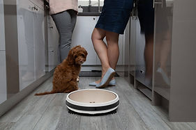 two ladies chat in kitchen with dog while bob pro robot vacuum cleans the floors