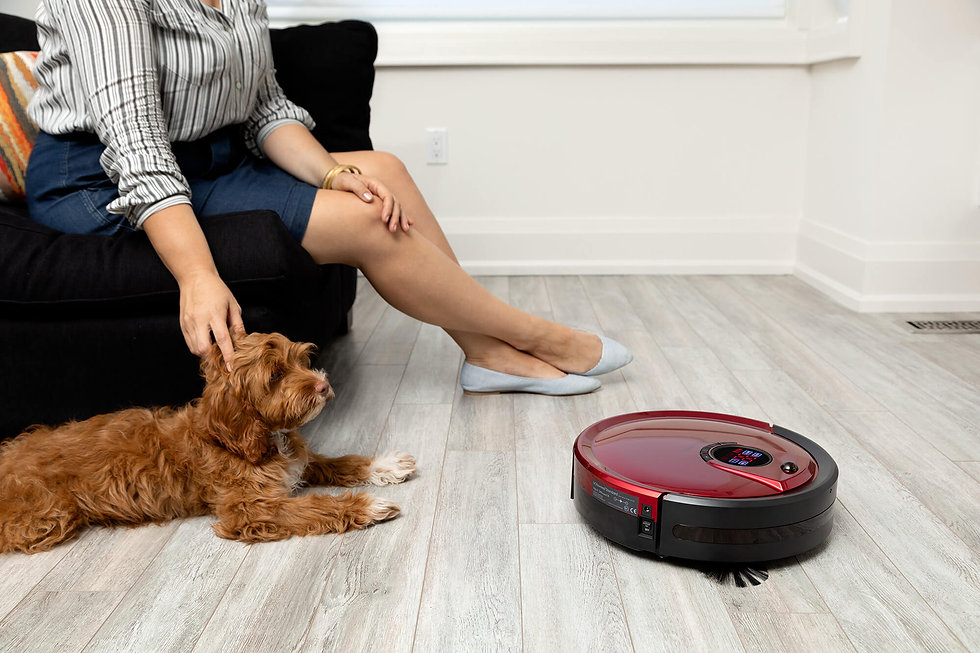 Woman and her small dog sitting on couch while a red Bob Standard cleans the floors
