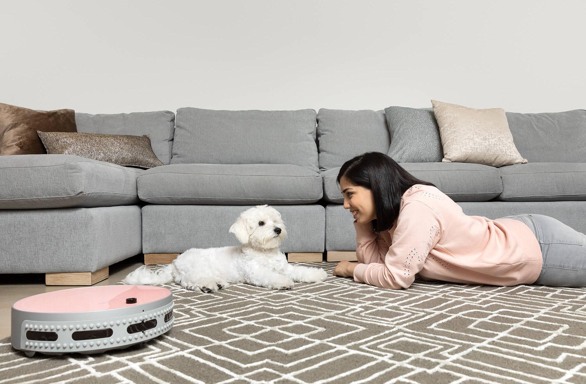 bObi Pet carpet