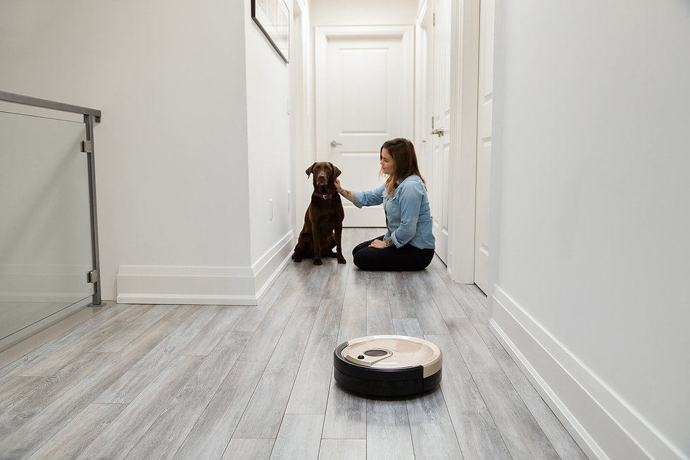 Girl and her dog sit at home while Bob Standard cleans the hallway floor