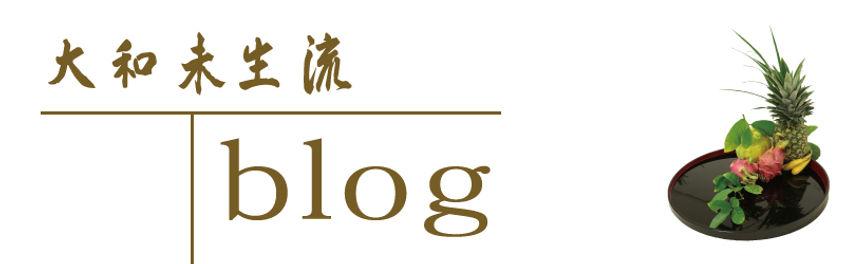 大和未生流blogロゴ