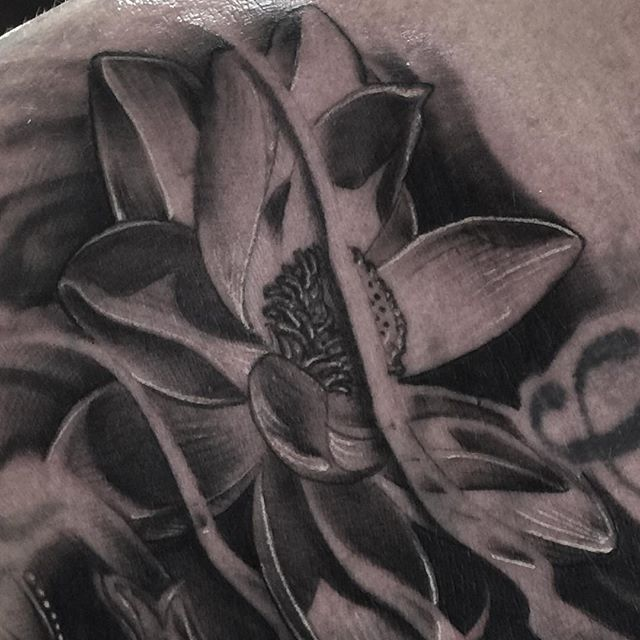 Closeup of another lotus 👀 _#joeydeliatattoos _#tampatattoos _#rdctampa