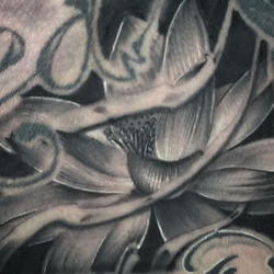 Closeup of a lotus from last week_Tattoo is 4 days old in this picture _#joeydeliatattoos _#tampatat