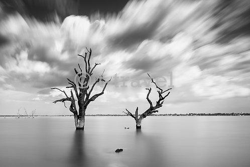 Lake Bonney - Daytime I