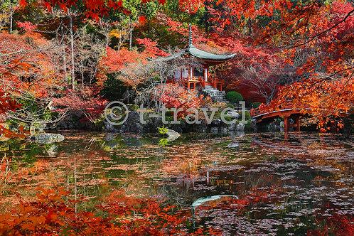 Daigoji Temple I