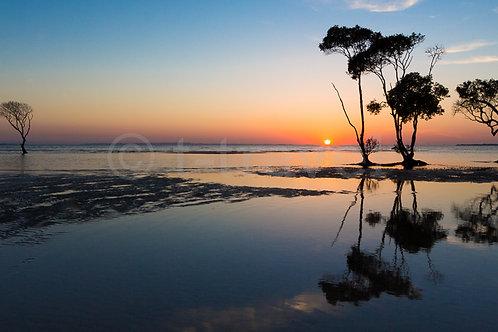 Morning Reflection (Pano II)