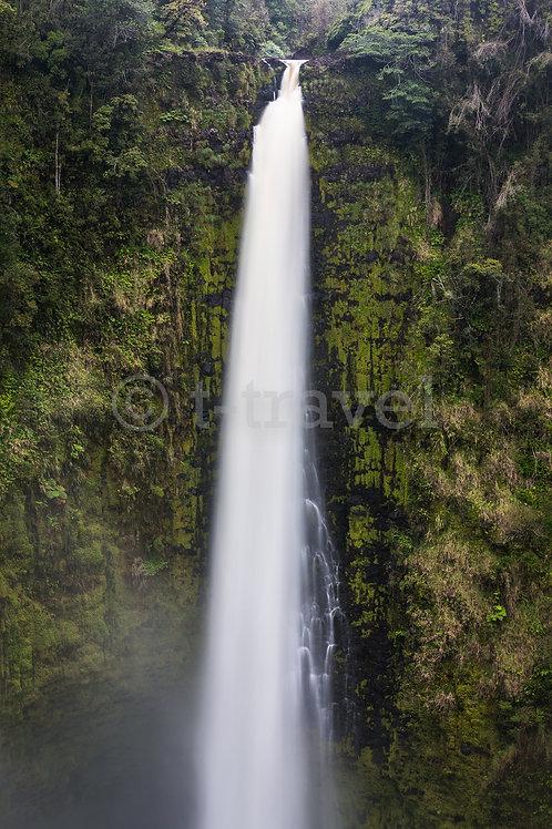 Akaka Falls VII