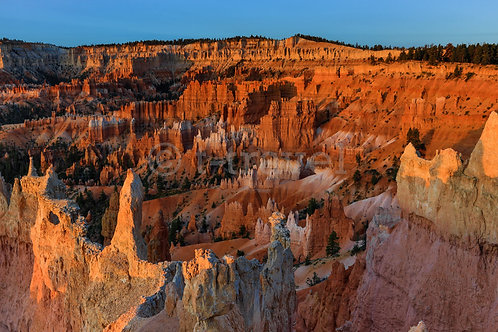 Morning Rays V (Bryce Canyon)