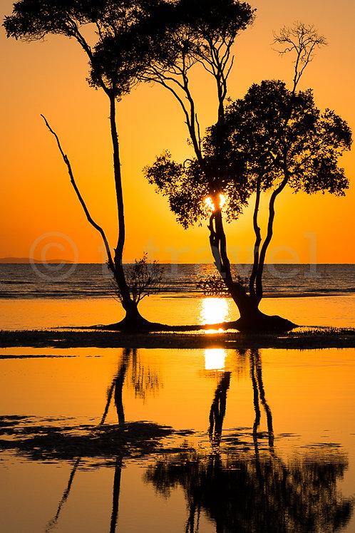 Morning Reflection (Pano I)