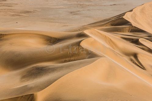 Dune 7 - I