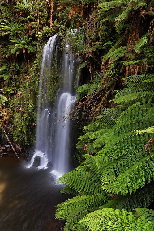 Beauchamp Falls I