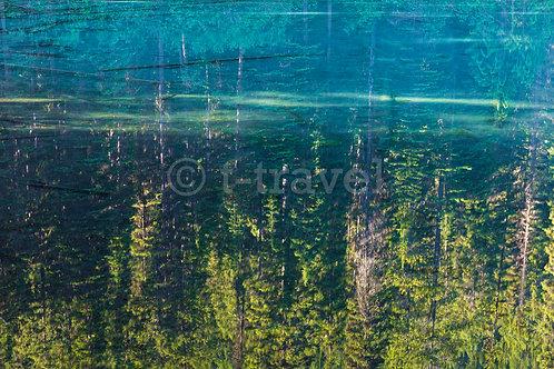 Olive Lake II