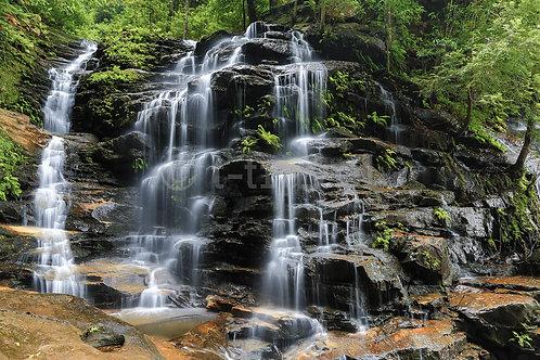 Blue Mountains - Sylvia Falls I