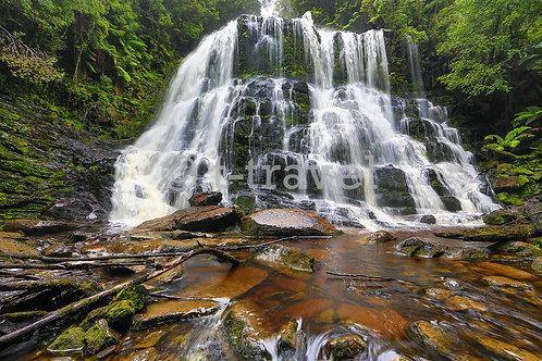 Tasmania - Nelson Falls I