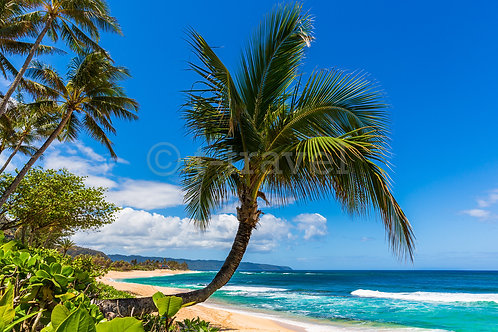 Sunset Beach IV