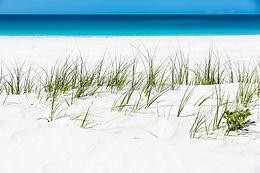 Oceans / Beaches
