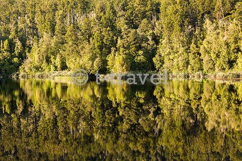 Lake Matheson - Sunrise XXIV