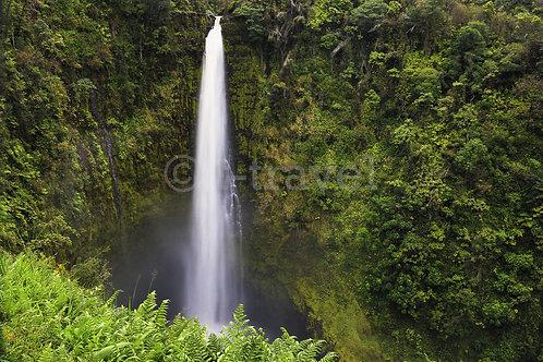 Akaka Falls III