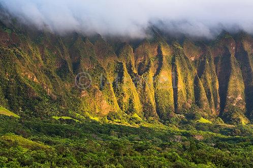 Koolau Ranges - Sunrise I