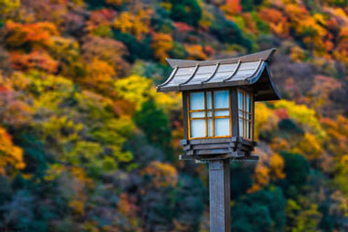 Autumn Colours of Arashiyama