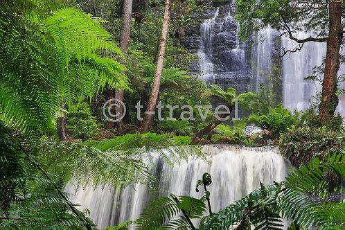 Tasmania - Russell Falls II