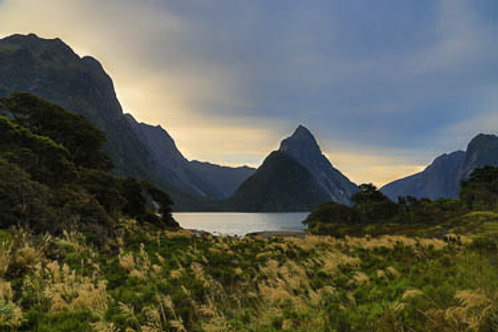 Raw nature of Milford Sound