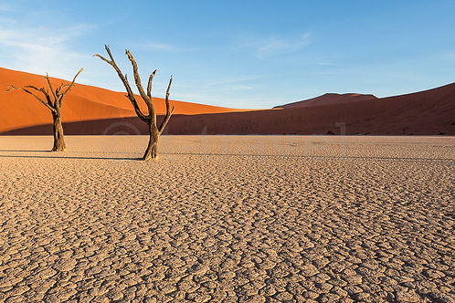 Deadvlei Panorama I