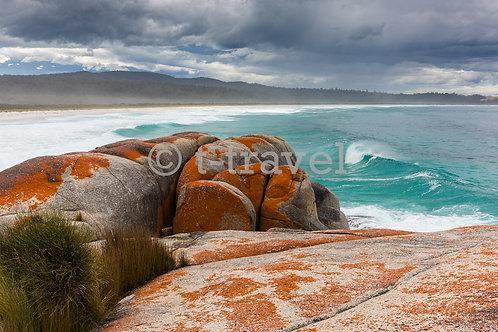 Bay of Fires - Sloop Reef VIII