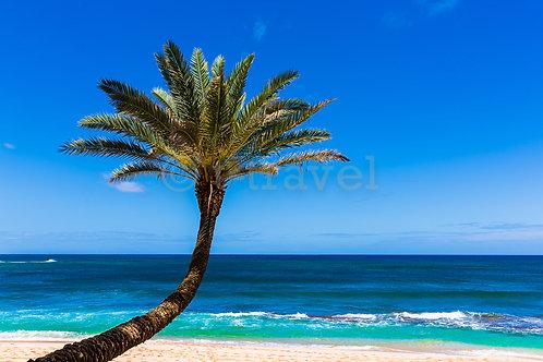 Sunset Beach V