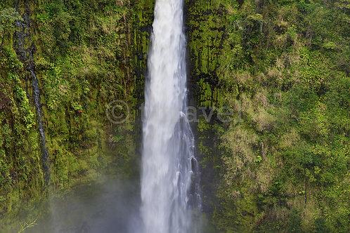 Akaka Falls I