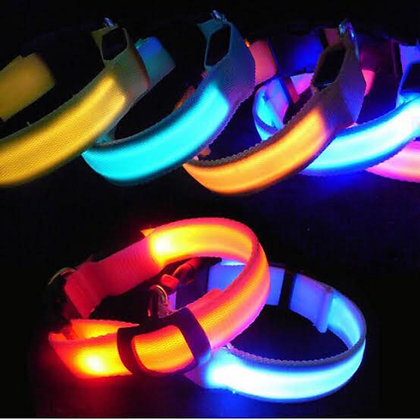 Flashing Dog Collars - LED - Charge w. USB - Very Bright at Night!