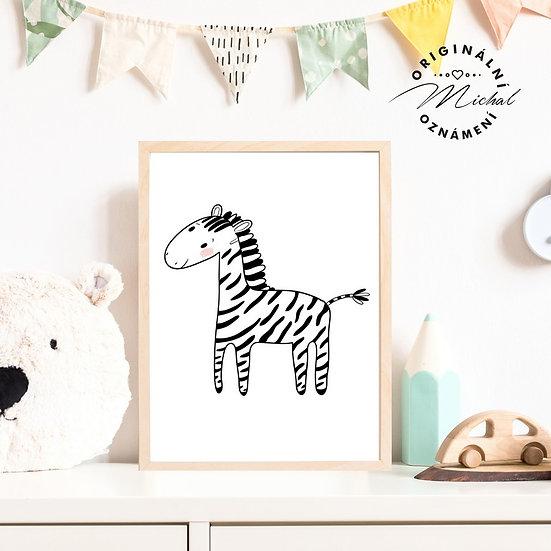 Plakát zebra Terka