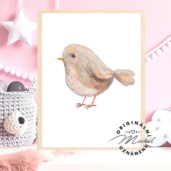 Plakát ptáčátko
