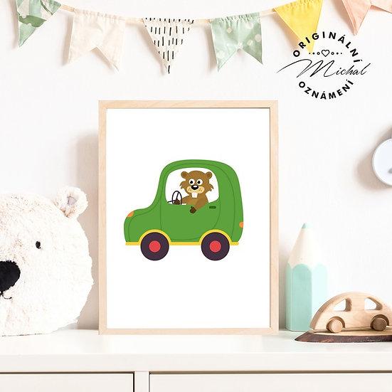 Plakát bobr auto